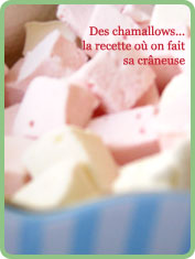 recette guimauve chamallows maison