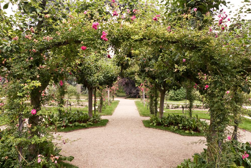 Balade aux jardins albert kahn onvasortir paris for Jardin anglais albert kahn