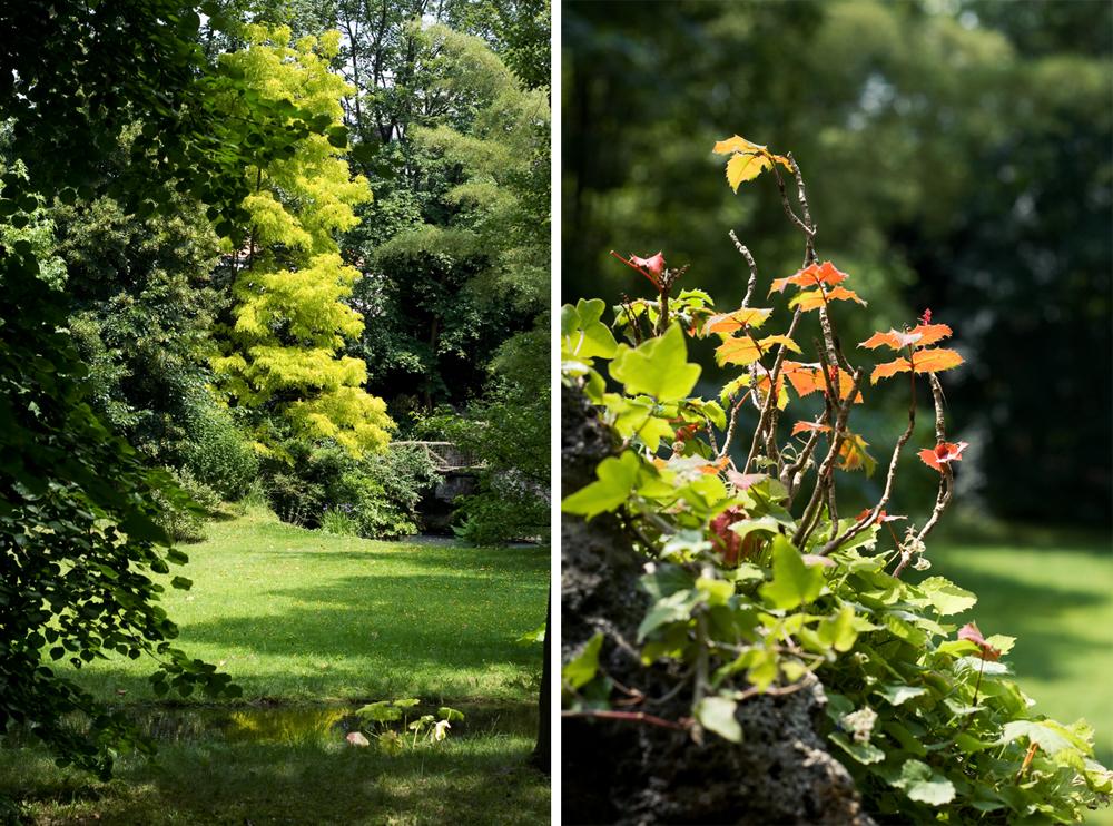 Visite des jardins d 39 albert kahn boulogne cachemire et for Jardin anglais albert kahn