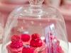 cupcakes-chloe-s-15.jpg