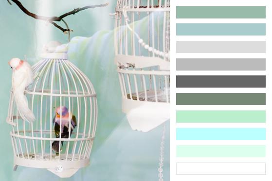 00-palette-bird