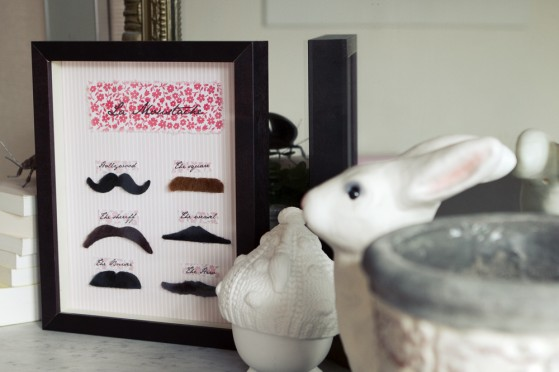 vitrine-moustache