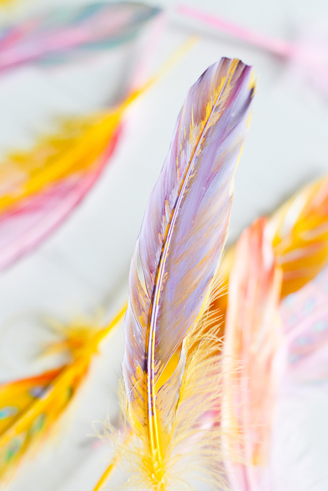 DIY-painted-feather-003a