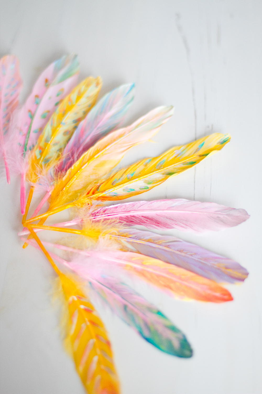 DIY-painted-feather-006