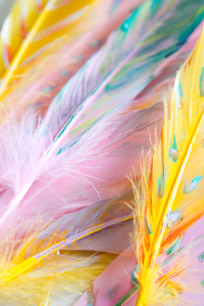 DIY-painted-feather-007a