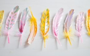 DIY-painted-feather-home