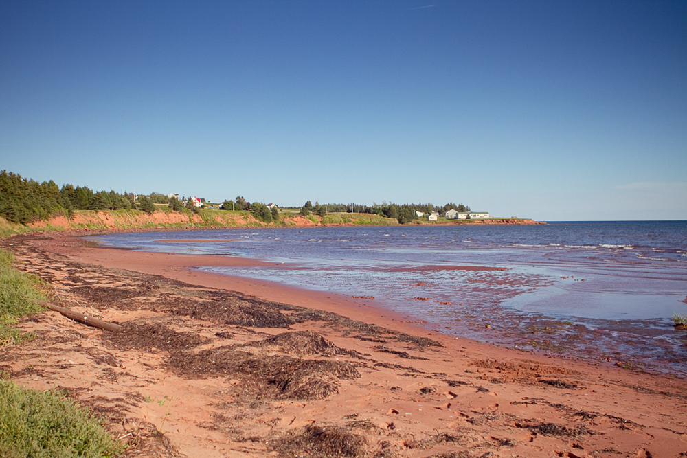 IPE-red-point-provincial-park-003
