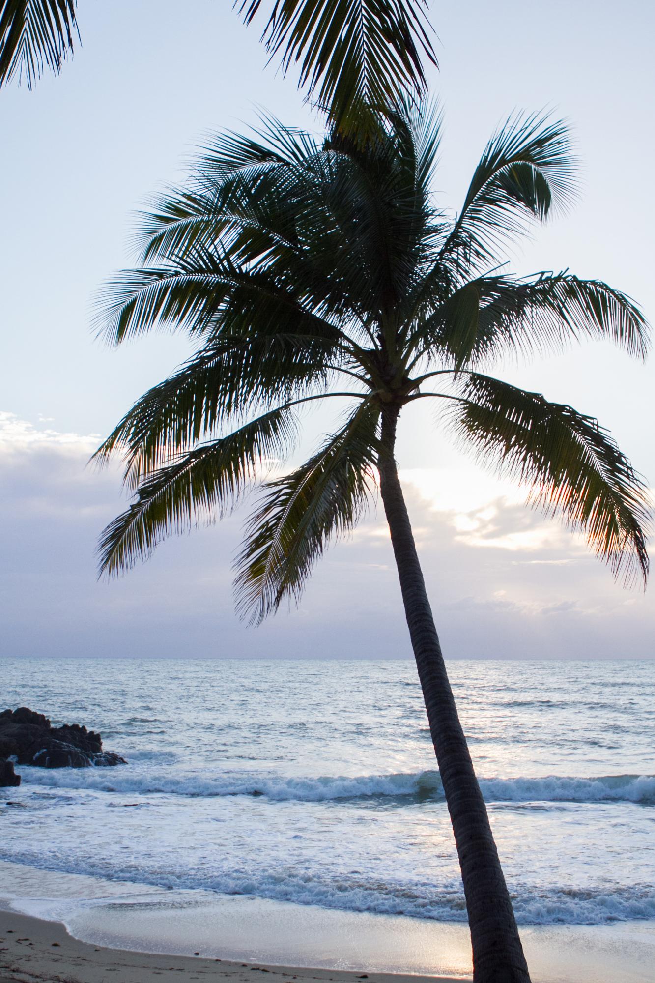thala-beach-004g
