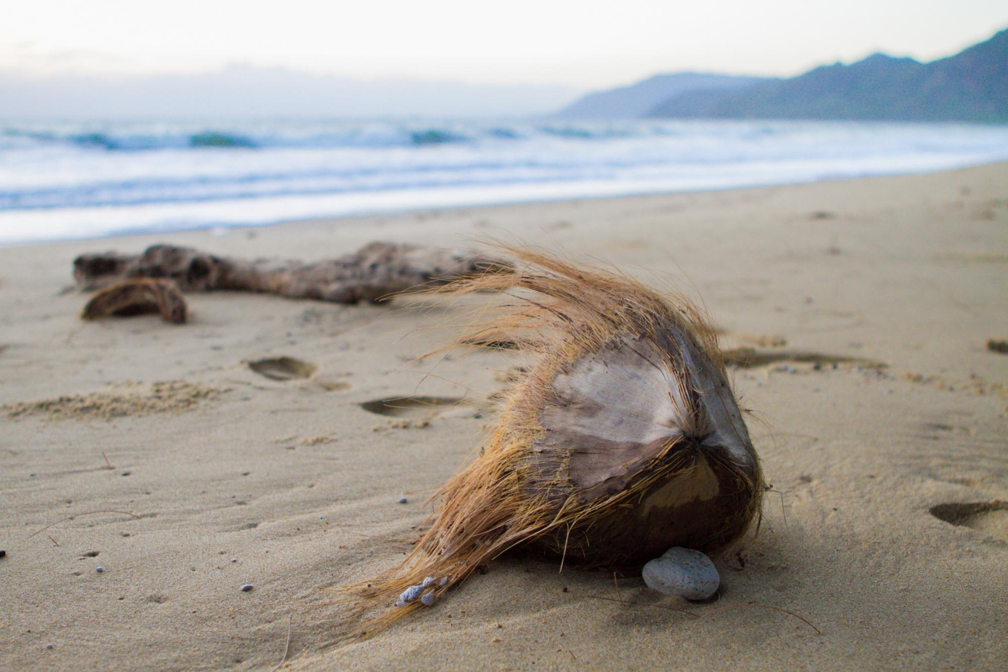 thala-beach-006
